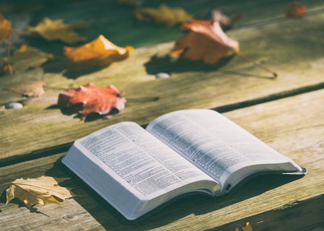 Open Bible and Commentaries on Romans